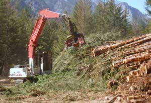 logging-for-mine-remediation-page.jpg
